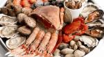 ostras y mejillones